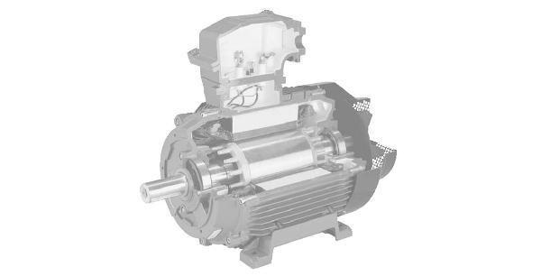 Электродвигатель EExd II B T4