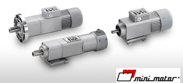 моторредуктор Minimotor 12/24V