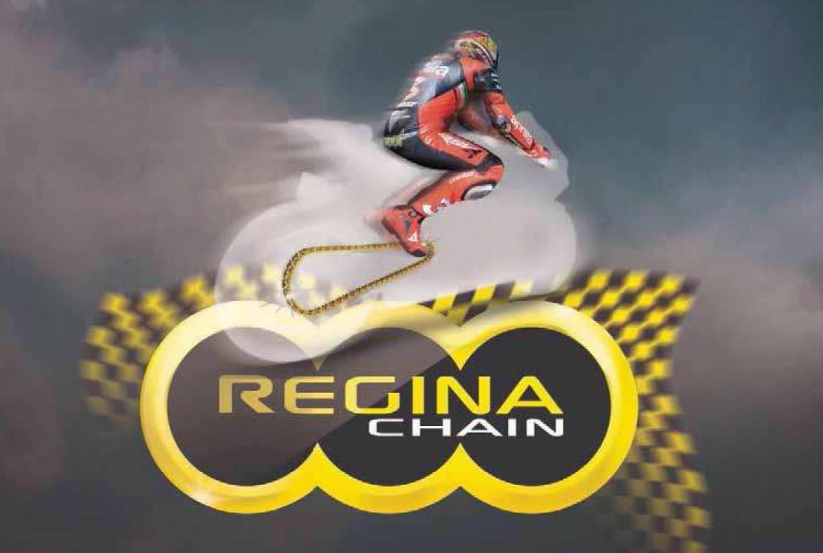 цепи Regina