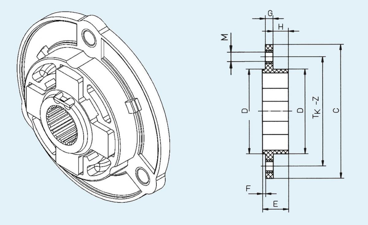 CF-K-100-165 hatz L/M 31-40 insert